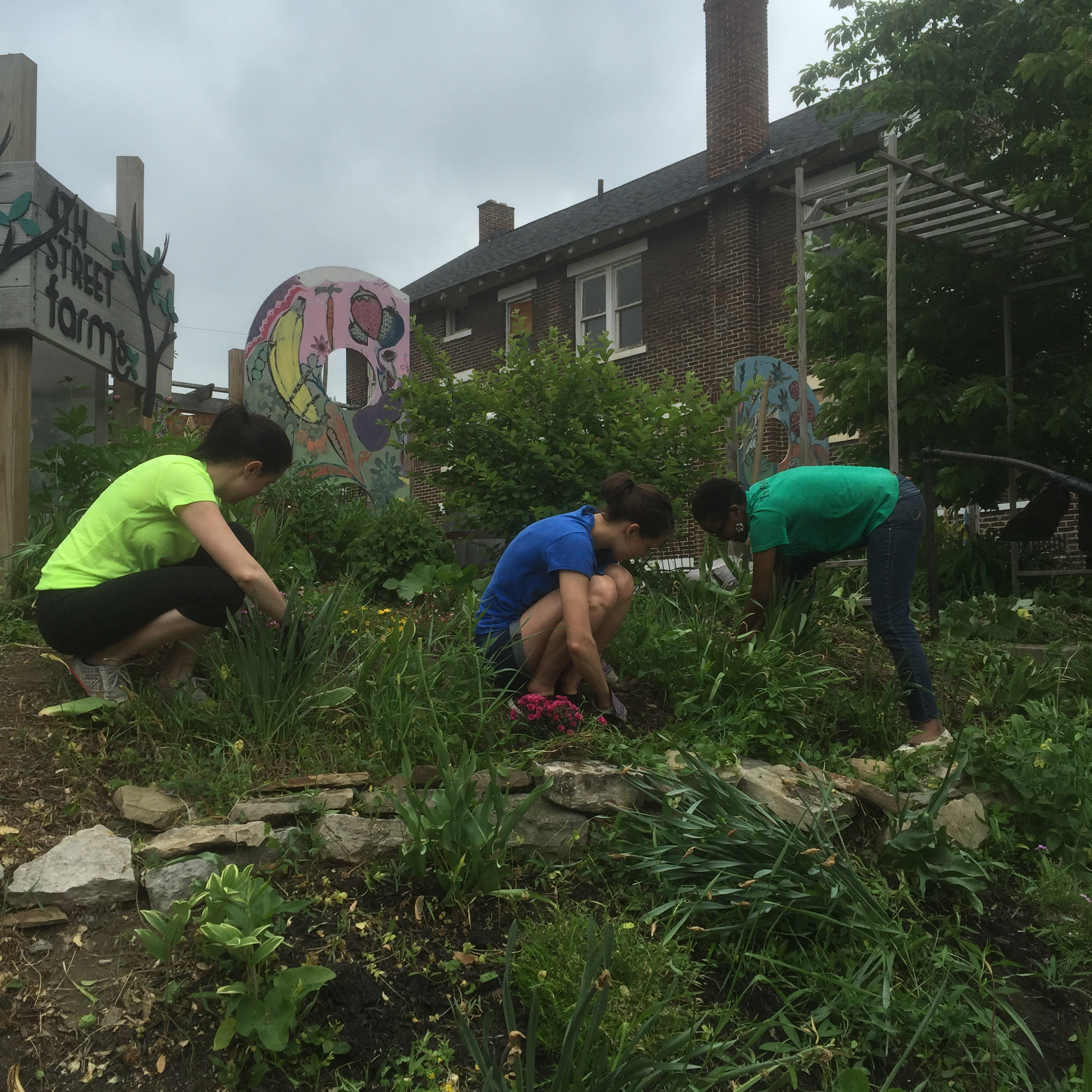 volunteers plant flowers in weinland park