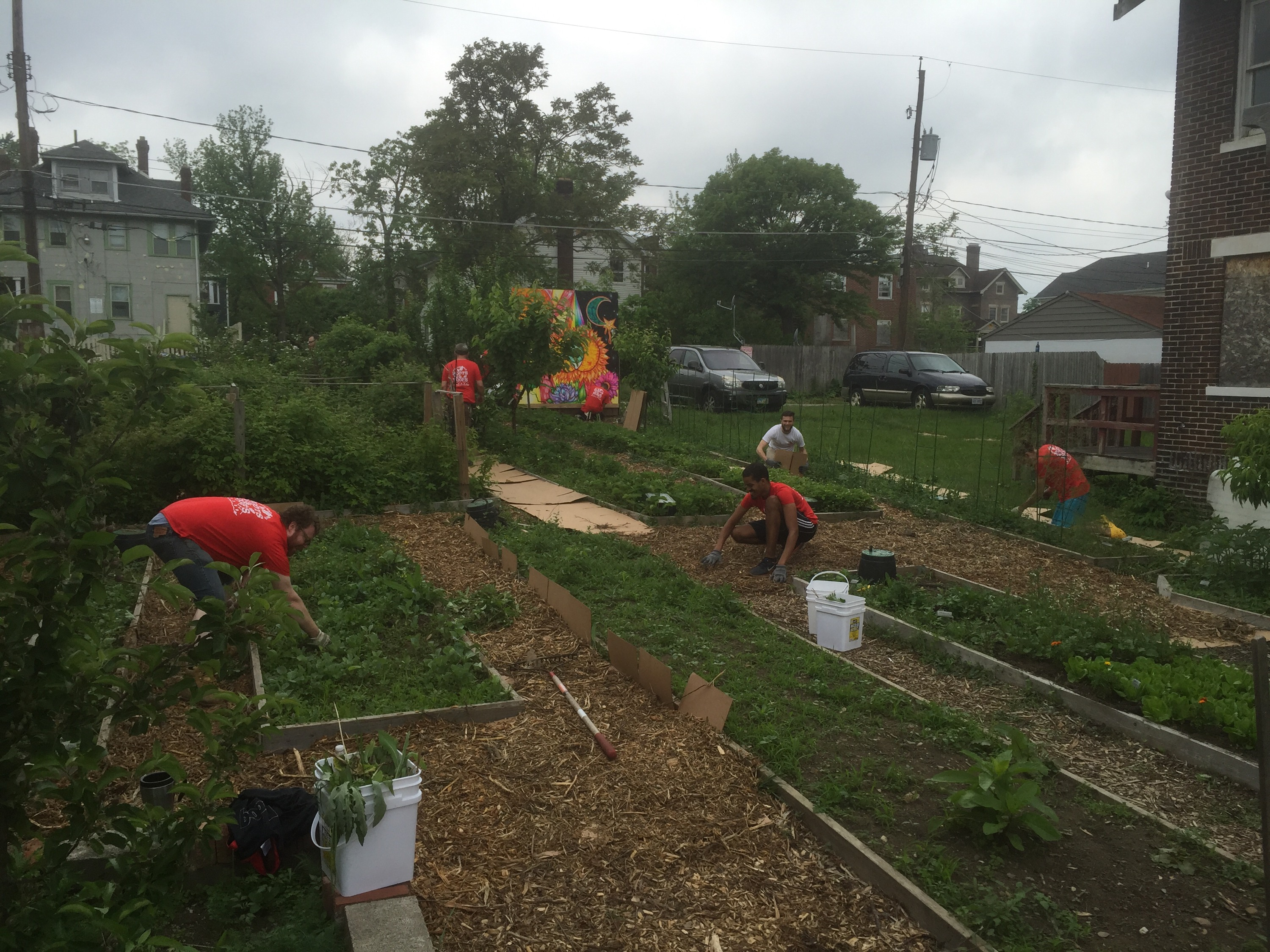 sustainable weinland park